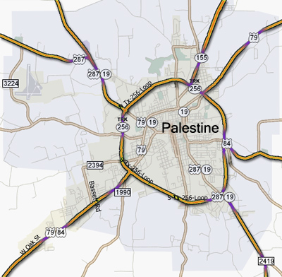 Palestine Texas Map